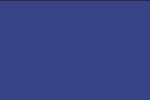 Logo APGO