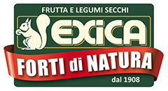 Logo BORGNINO VITTORIO S.R.L.