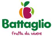 Logo BATTAGLIO S.P.A.