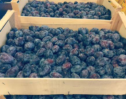 Ramasin di Saluzzo   B.T. Fruit SRL
